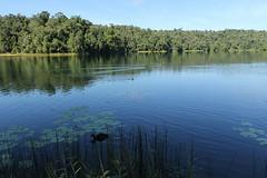Lake Barrine (Caleb McElrea) Tags: lakebarrine craterlakesnationalpark mist athertontableland wettropicsofqueensland farnorthqueensland fnq worldheritagearea unesco queensland australia
