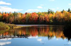 Journée d'automne / An autumn day (1-5) (Donald Plourde) Tags: lac irishtown lake automne autumn arbres feuilles trees leaves