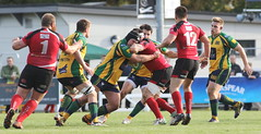 840A5222 (Steve Karpa Photography) Tags: henleyhawks henley redruth rugby rugbyunion game sport competition outdoorsport