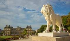 Lion Facing French Senate (Cloudwhisperer67) Tags: summer 2017 cityscape scape skyline horizon paris sky strange incredible france cloudwhisperer67 skies skyscape landscape magic marvellous great fabulous nice world blue roofs parisian panorama panoramic french clouds amazing canon 760d lion statue facing senate palace palais luxembourg europe monument