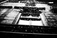 Rainfall 63.365 (ewitsoe) Tags: rain autumn fall lookingup look nikond80 35mm street city urban window sidewalk raininghard raingdown water raining wet watery weather 365 63