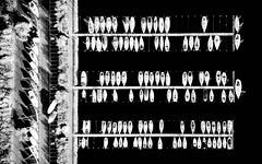 Patterns (Ellen van den Doel) Tags: shadow pattern pro netherlands water overflakkee harbor boats wit sailboat nederland goeree herkingen patronen 2017 bomen drone mavic boten oktober dji black trees aerial zwart abstract white zuidholland nl