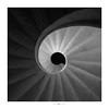 ....nautilus (paolo paccagnella) Tags: phpph© bn bw best blackandwhite sun q square framework framed minimal minimalism eos5dm3 eyes bianco foto flickr squareformat grey scala autoportante light shadow