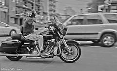 Drive-By B&W - Ottawa 08 17 (Mikey G Ottawa) Tags: mikeygottawa canada ontario ottawa street motorbike motorrad moto motorcycle driveby bw motionblur harley harleydavidson pan explore explored