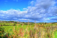 Beside the Forth & Clyde Canal looking towards Longcroft. (Nineteen64 Photography) Tags: scotland canal longcroft forthandclyde autumn falkirk countryside