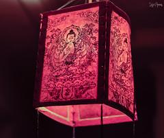 Paper Lantern (Sajivrochergurung) Tags: light night paper lantern festival diwali
