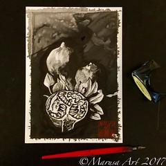 Pomegranate (marusaart) Tags: tinte tusche ink granatäpfel pomegranate zeichnung zeichnen drawing draw marusaart künstler kunst artist art