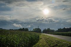 Haag / H. (____jR) Tags: b141 sunset natur landschaft