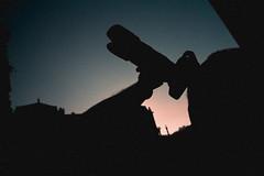 Reach out for Jupiter (Thomas Listl) Tags: thomaslistl color black dark sky blue orange silhouette camera tele wideangle ultrawideangle contrasts shades
