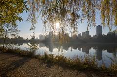 Through The Leaves (Clayton Perry Photoworks) Tags: vancouver bc canada fall autumn explorebc explorecanada skyline sunrise leaves trees colour stanleypark lostlagoon reflections