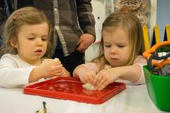 Wool Felting (NYSCI) Tags: littlemakers earlychildhood children wool felting maker space