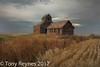 Best of the Best (Tony Reynes) Tags: northdakota afternoon clouds barn wheat gray brown red maize blue