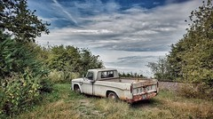 first the guts,now comes the glory...(HTT) (BillsExplorations) Tags: dodge truck vintage old oldtruck rust decay psychosilo saloon display truckthursday guts glory sky clouds field illinois retired