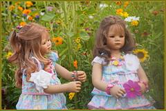 Ich hab Dich doch lieb ... (Kindergartenkinder) Tags: kindergartenkinder annette himstedt dolls milina tivi grugapark essen gruga blumenwiese annemoni blume
