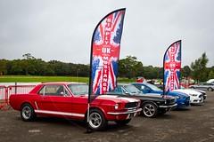 Simply Mustangs UK (MPH94) Tags: oulton park classic sports car club auto cars motor sport motorsport race racing motorracing canon 7d meeting october cscc simply mustangs uk ford mustang
