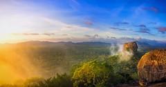 Sigiriya - Sri Lanka (dkphotographs) Tags: srilanka morning light sunrise sun sunlight autumn fog misty rural trees field beautiful clouds sky red orange yellow fall foggy hazy country landscape nature wildlife countryside sonyalpha6000 sigiriya panorama hdr