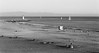 Santa Cruz, California (trphotoguy) Tags: santacruz california contaxrx ilforddelta400 carlzeiss100mmf2 film blackwhite bw beach carlzeissplanar100mmf2mmj