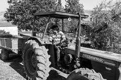 Nicola in fase di manovra (Mancini photography) Tags: trattore tractor man uomo work lavoro toscana tuscany countryside campagna monocromo black white bianco nero alberi trees canon 80d