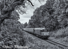 20170923-IMG_6196-Edit (deltic21) Tags: eastlancs east lancashire lancs rail railway railways rails train trains traction track tracks british britishrail brblue bw blackwhite brgreen br brmaroon classic clag class diesel dieselgala gala monochrome northwest north canon ramsbottom rammy rawtenstall bury burrs summerseat brooksbottom 33109 grey civil engineers crompton type3 bagpipe 331 preservation preserved station elr