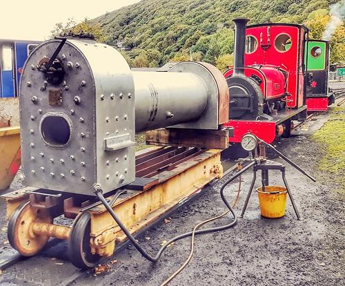Wild Aster boiler.