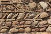 Muro di Olimpia