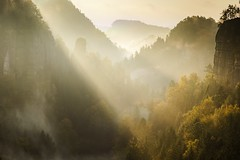 Goldener Herbstmorgen (Philipp Zieger - www.philippzieger-photographie.de) Tags: sel5018oss a6000 sony fog nebel valley tal deutschland germany licht light herbst atumn elbsandsteingebirge saxonswitzerland sächsischeschweiz