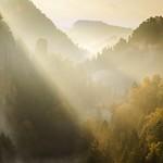 Goldener Herbstmorgen thumbnail