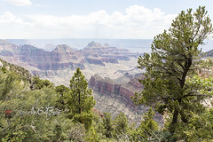 Scenic Views Of The Grand Canyon North Rim (Action Sports Photography, Inc.) Tags: america arid arizona beautiful blue canyon cliffs cloud clouds colors colours desert dry edge elevation erosion formations geologic geology grand great harsh horizon landmark landscape ledge light magnificent mountains national natural nature north orange outdoors overlook park peak red rim rock sand scale scene scenic sky southwest stone sunlight trails northrim unitedstatesofamerica usa