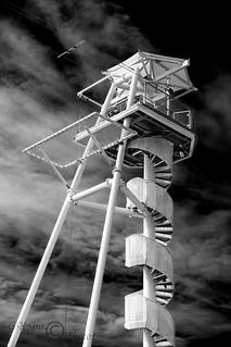 Brighton Zip (M)-03164M