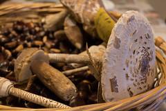 Panier d'automne 3 (take a look through my eyes ;)) Tags: panier basket automne autumn champignons mushrooms nature forêt forest chestnut châtaignes cèpe bolet coulemelle leaf feuille france