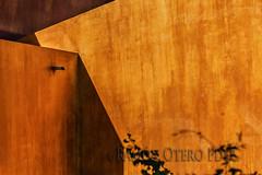 Sombra sobre naranja - ROF2011-20171006 (Fotógrafos en Canarias) Tags: santabrígida grancanaria isladegrancanaria islascanarias canarias paisajescanarios paisajesdecanarias paisajesdegrancanaria fotosdecanarias fotografíasdegrancanaria imágenescanarias postalescanarias panorámicascanarias naturalezacanaria fotógrafosencanarias turismo canarias3d ramónoterofernández canaryislands landscapes canarianlandscapes landscapescanaries landscapesofthecanaryisland landscapesofgrancanaria picturesofcanarias canaryimages photographsofgrancanaria postcardscanaryislands panoramiccanarias naturecanaria photographersinthecanaryisl tourism arquitectura arquitectos edificios construcciones casas obrasciviles elementosarquitectónicos llamadores puertas ventanas fachadas calles callejones patios palacios palacetes arquitecturamodernista architecture architects buildings houses civilworks architecturalelements palaces modernistarchitecture doors windows facades streets alleys esculturas relives figuras sculptures reliefs figures españa landscapesofthecanaryislands photographersinthecanaryislands