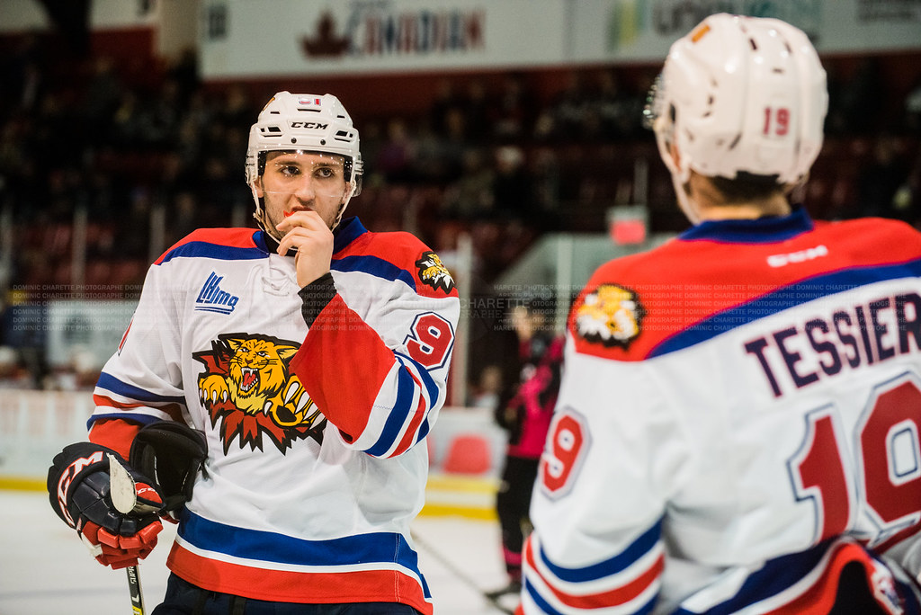 The World's Best Photos of hockey and moncton - Flickr Hive Mind