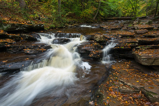 Cascading Through Fall