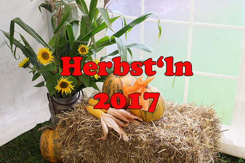 "Herbstln2017_000 • <a style=""font-size:0.8em;"" href=""http://www.flickr.com/photos/96859782@N03/37433680105/"" target=""_blank"">View on Flickr</a>"