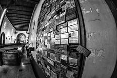 Wall (Oxkar G) Tags: nikon d5300 exterior city ciudad lente manual blanco street calle negro noir blanc blackwhite monocromo gente 8mm interior iglesia muralla wall