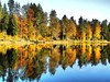 The reflection (almresi1) Tags: spiegelung water wasser see lake wald wood forest bäume trees herbst fall autumn colours bunt ebnisee welzheim