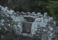 Char Vale stone stile. Entrance to Monknash House. January 1983 (Mary Gillham Archive Project) Tags: 1983 4130 january1983 landscape monknash ss9170 wales unitedkingdom gb