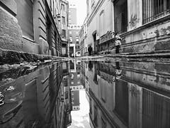 Santiago de Chile (Alejandro Bonilla) Tags: santiago street sony santiagodechile santiaguinos sam santiagochile santiagocentro streetphotography sonya290 urban urbano urbana urbex u bw blancoynegro bn blackandwhite black manuelvenegas minolta monocromatico monocromo