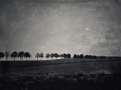 Long Way Home (rorofot) Tags: stackables landscape outofthephone snapseed bnw mextures blackandwhite trees iphoneography iphone