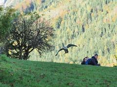 PA114227 (RiverboyChen) Tags: 國外旅遊 歐洲 奧地利 維爾芬 鷹堡 hohenwerfencastle