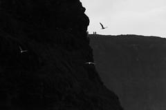 Cliffs of Moher - Two sets of tourists (AbbasiAli) Tags: ireland dublin cliffs cliffsofmoher blackwhite bw canon westireland tokina rain autumn fall weather roadtrip travel seagulls sea coast alantic ocean wildatlanticway clare county