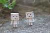 IMG_6585 (ccandyluv357) Tags: danbo danboard toys