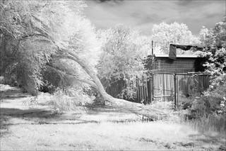 ferntree-gully-0973-ps-w
