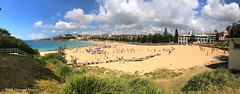 Coogee Beach, from Dunningham Reserve, Coogee, Sydney, NSW (Black Diamond Images) Tags: dunninghamreserve coogeebeach coogee sydney nsw australia beach australianbeaches sydneybeaches iphone appleiphone7plus iphone7plus panorama appleiphone7pluspanorama iphone7pluspanorama iphonepanorama sand sky sea tree grass people water bay city landscape park boats