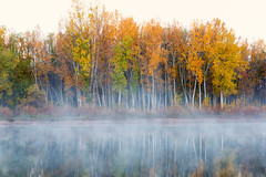 Reflections of Fall (mclcbooks) Tags: lake landscape dawn morning daybreak mist reflections trees leaves autumn colors fall chatfieldstatepark lakechatfield colorado