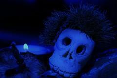 spooky halloween (stellagrimsdale) Tags: macromondays halloween macro mondays spooky candle skull scary hmm candlelight mushroom