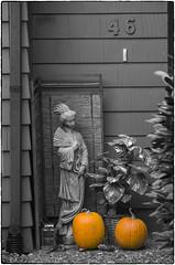 Pumpkin Study #46 (NoJuan) Tags: selectivecolor selectivedesaturation cutout cutouts pumpkins sonya7 sonya7withmanualfocuslens mamiyasekor manualfocuslensondslr fotodiox fotodioxadapter vintagelens m42 m42lens m42screwmount