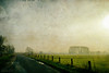 silence (*silviaON) Tags: textured distressedtexture flypaper landscape germany
