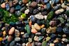Colorful Pebbles (ValeTer_) Tags: nikond5000 obstructionpassstatepark orcasisland usa washingtonstate macro colors pebbles