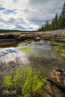 Tidal Pool, Southwest Harbor, Maine  (30023)